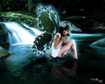 fairy of ilusion