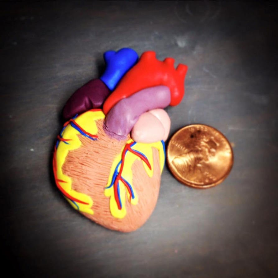 A Heart Full of Love by birdielover