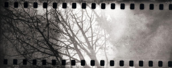 holga 35mm III by aussitotmort