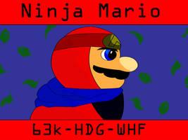 Mario Maker 2 Level - Ninja Mario