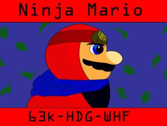 Mario Maker 2 Level - Ninja Mario by Ajustice90