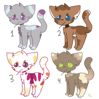 Cheap angry catto adopts (CLOSED) by Pookadook4
