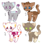 Cheap angry catto adopts (CLOSED)