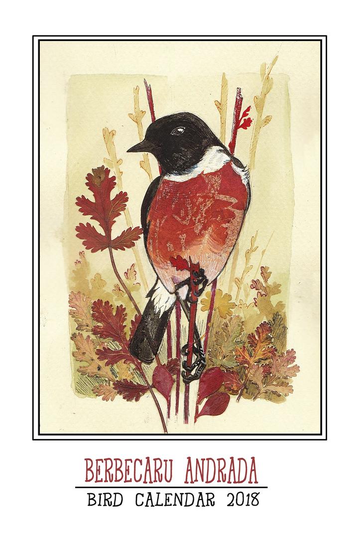 2018 European Bird Calendar! by 00BlacKBerrY00