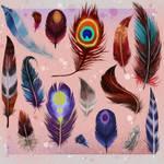 Watercolor Feathers || Plumas en acuarela