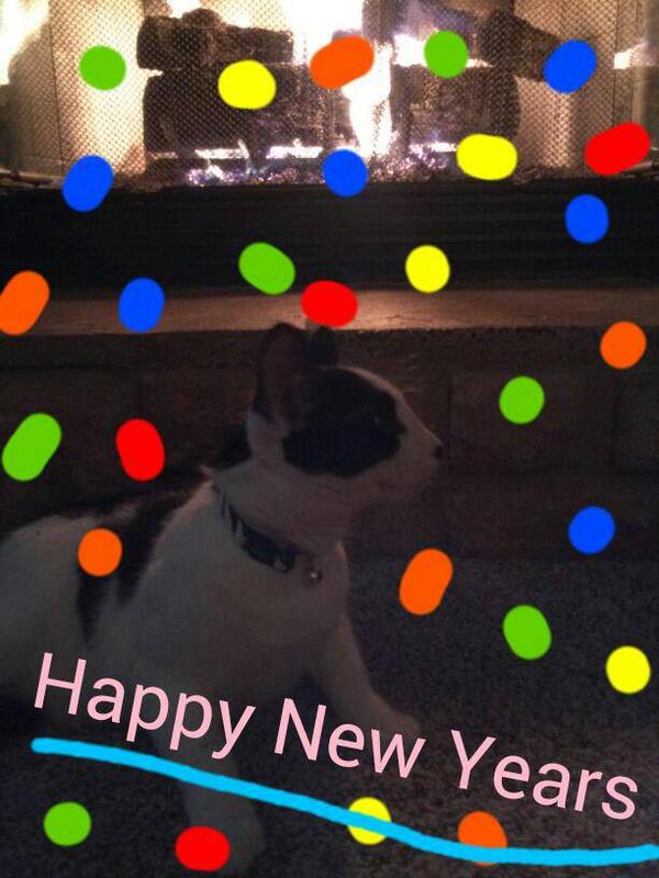 bing clip art happy new year - photo #43