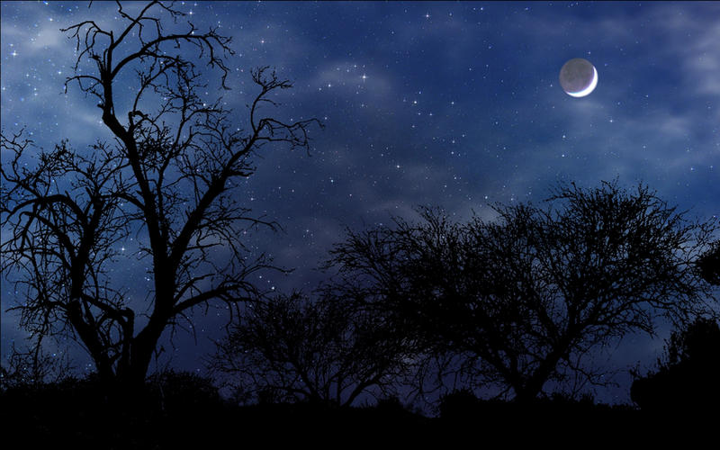 Night Scene widescreen by norif