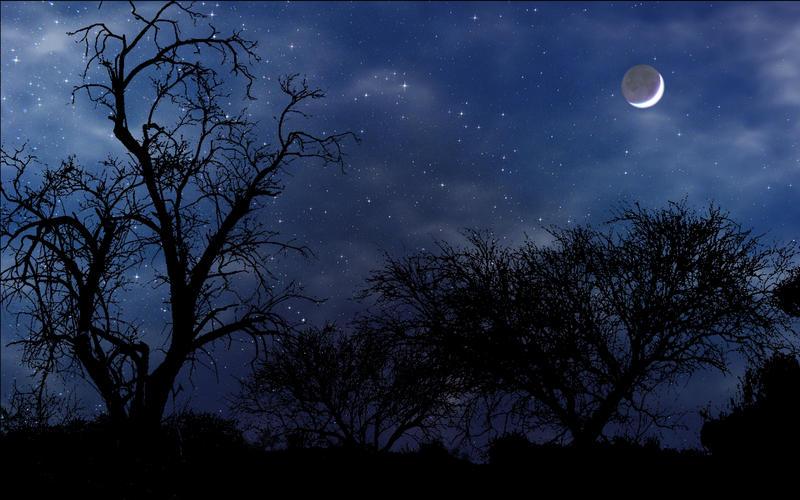 Night Scene widescreen by norif