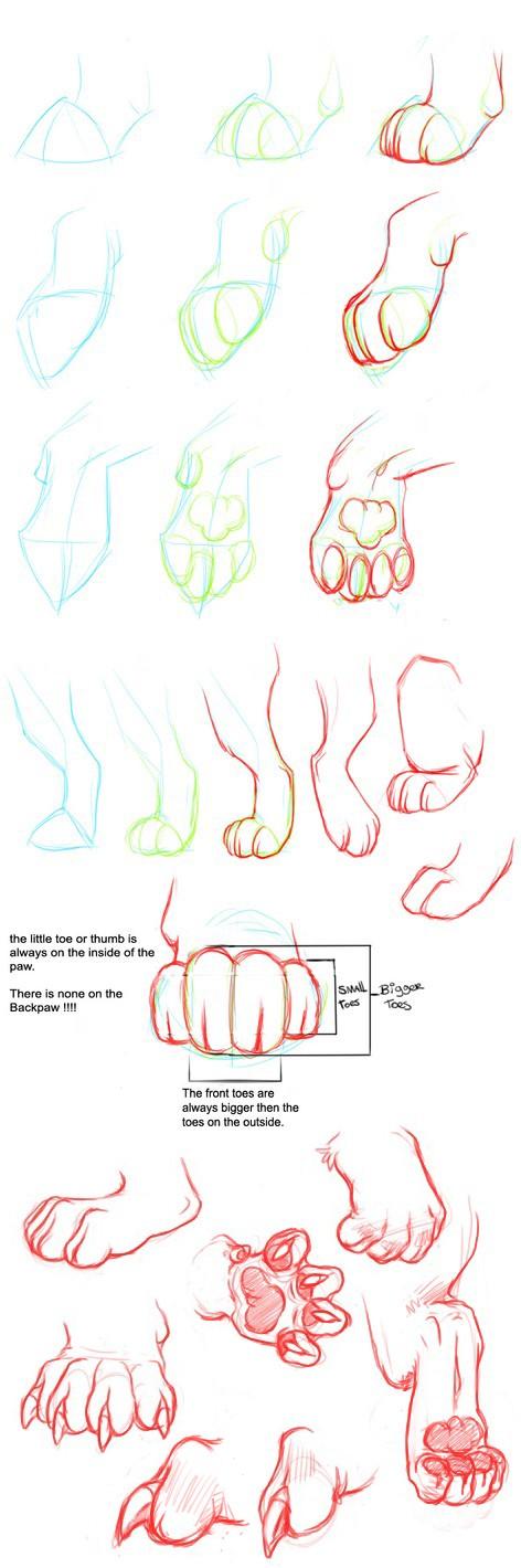 Paw tutorial by Nizira-Hathor