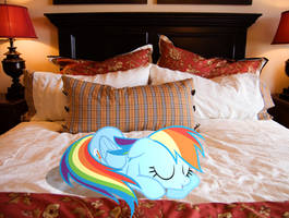 Dashie sleeping peacefully. by HAchaosagent
