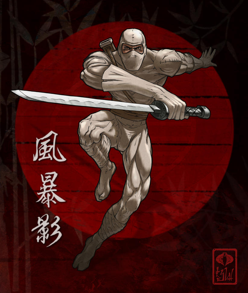 Storm Shadow Ninja by LarryWilson