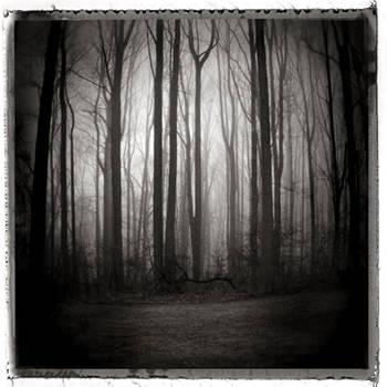 'illusion of clarity' by OcheerioO
