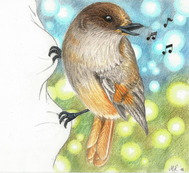 Siberian Jay by ArtOfNightSky