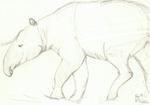 Tapir by AltaikaTau