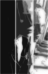 Self-Mutilation by Tigress420