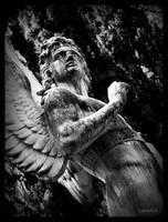 Acatholic Cemetery 1 by f-c-n