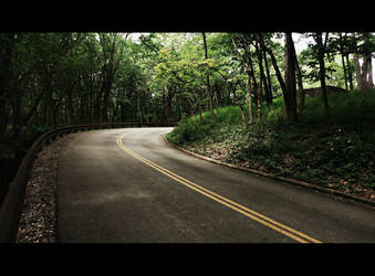 Green Leaf Road by Canthgyl