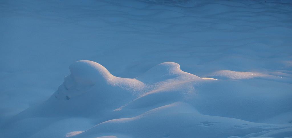 Snowblue by infinityloop