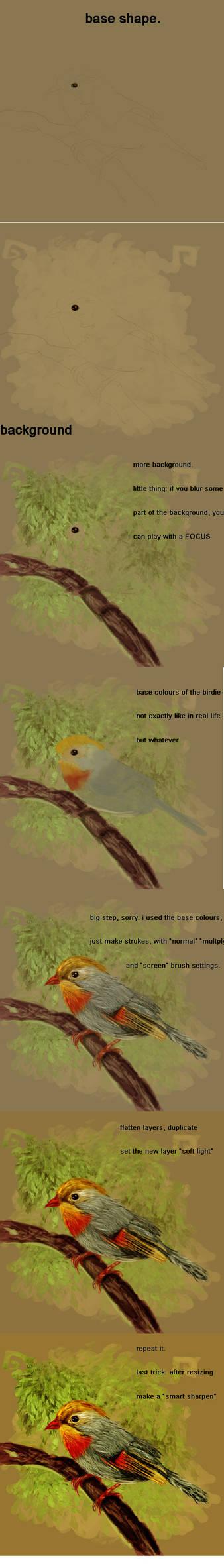 Robin tutorial