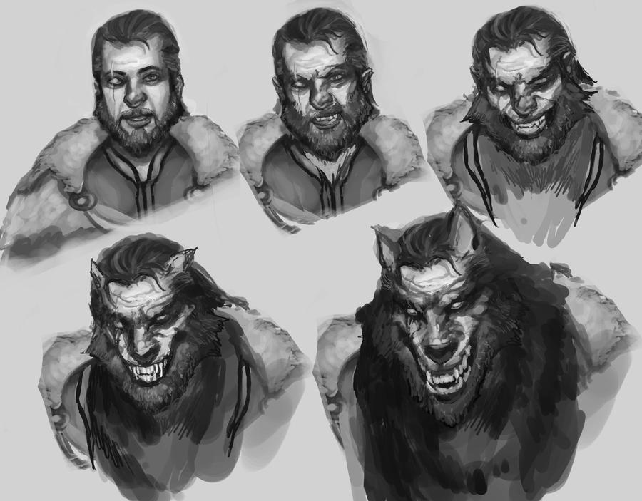 Werewolf Transformation Drawing Werewolf Transformation by