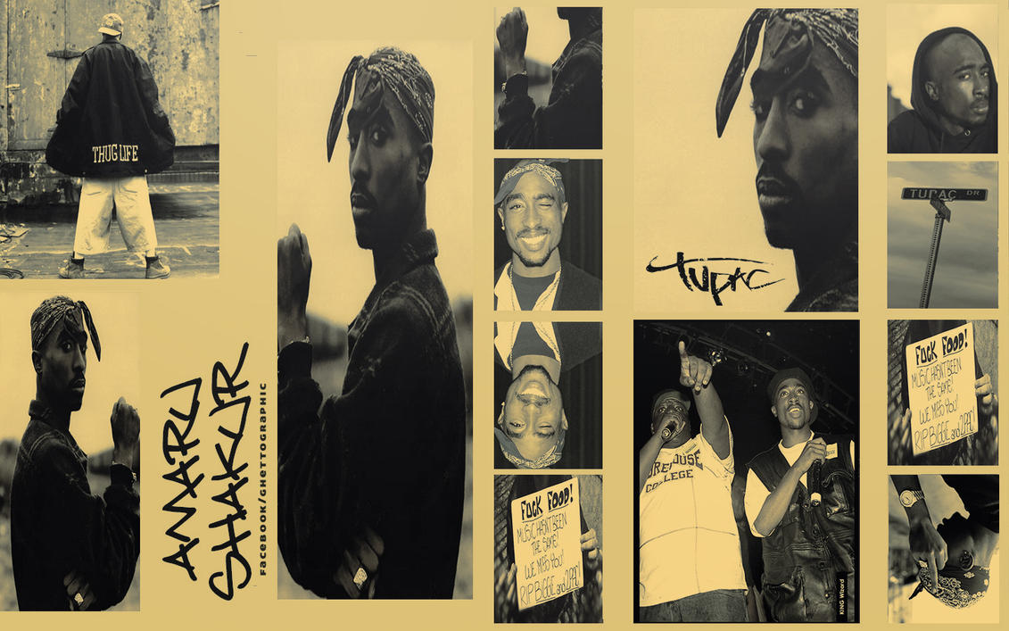 the life and works of tupac amaru shakur Tupac amaru shakur (harlem, new york, the life and works of tupac amaru shakur 16 tupac shakur had a lot the life and works of tupac amaru shakur to live for—his devoted fans, his fiancée.