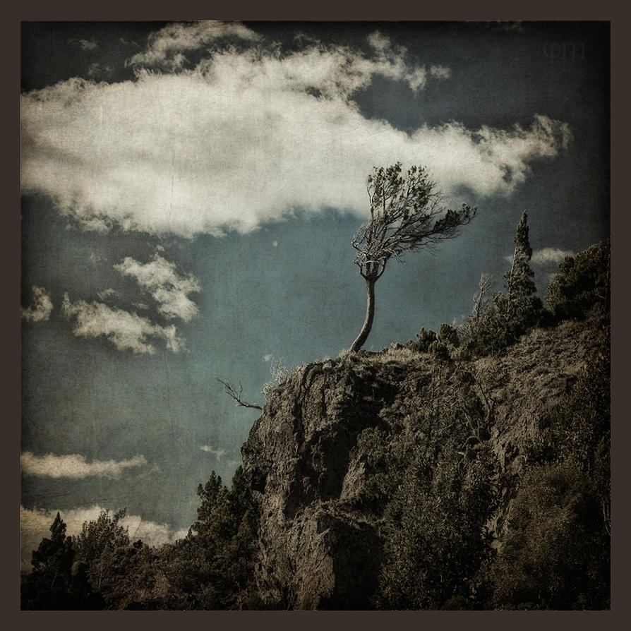 Loneliness III by guille1701