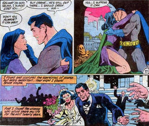 Bruce And Selina Married