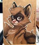Cat ECCC Sketch