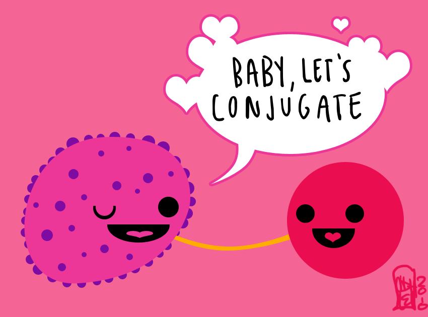 Valentine's Day Bacteria