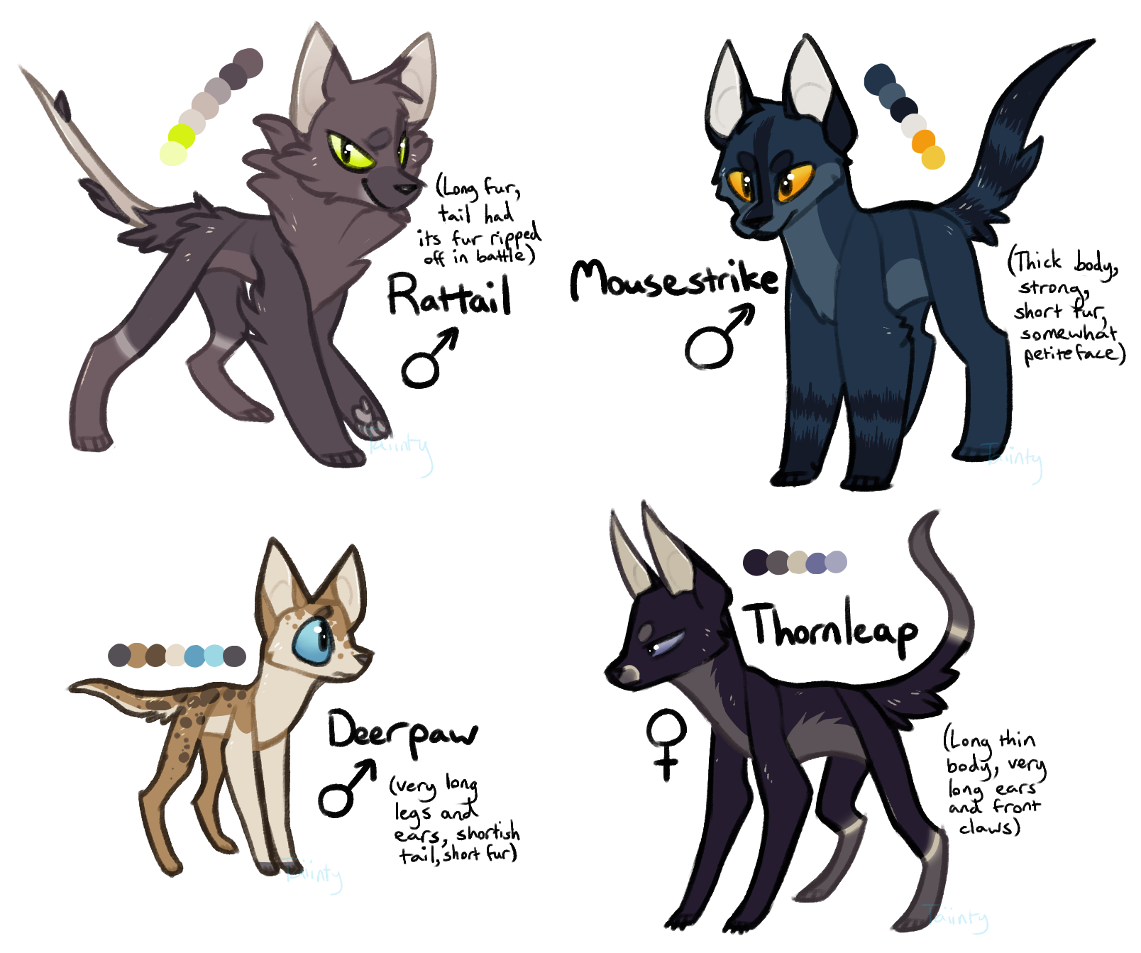 Warrior Cat Roleplay Ideas