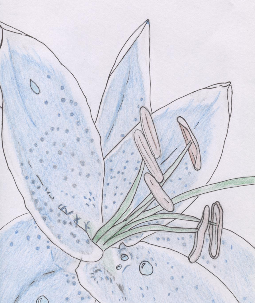 Memory flower by Dream-Catcher-120