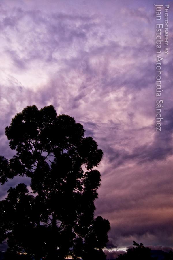 Bajo el violeta atardecer by K-Blast