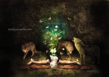 butterfly queen and three wolves