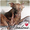 Ugly Dog Loves You by MNBeauty