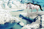 comm: Glacier