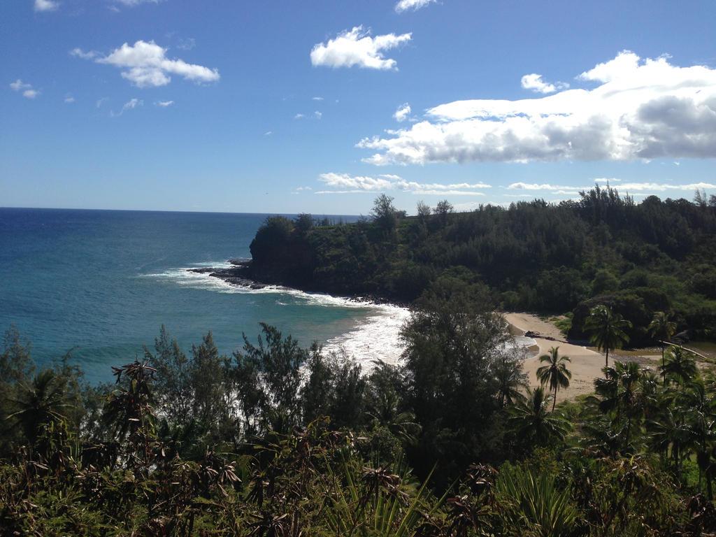 Beach Overlook 2 by TalonDragon000