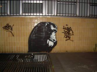 Thinkin Monkey by srcrew