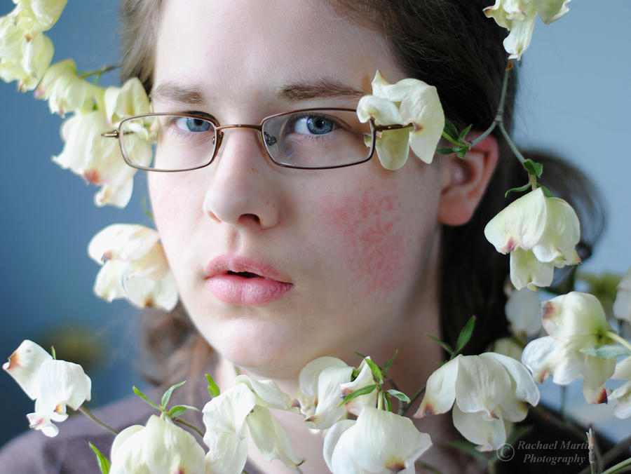 A Bouquet of Dogwood Flowers by VisualPoems on DeviantArt