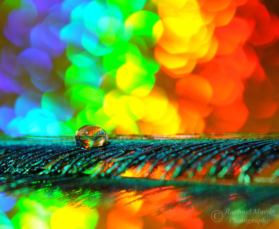 Rainbow Connection by VisualPoems on DeviantArt Colorful Connections