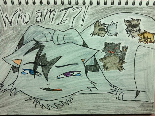Who am I?! Infinite Clan dedication 3 by Jayfeather97