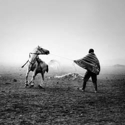 desert's dancer. by nrprtm