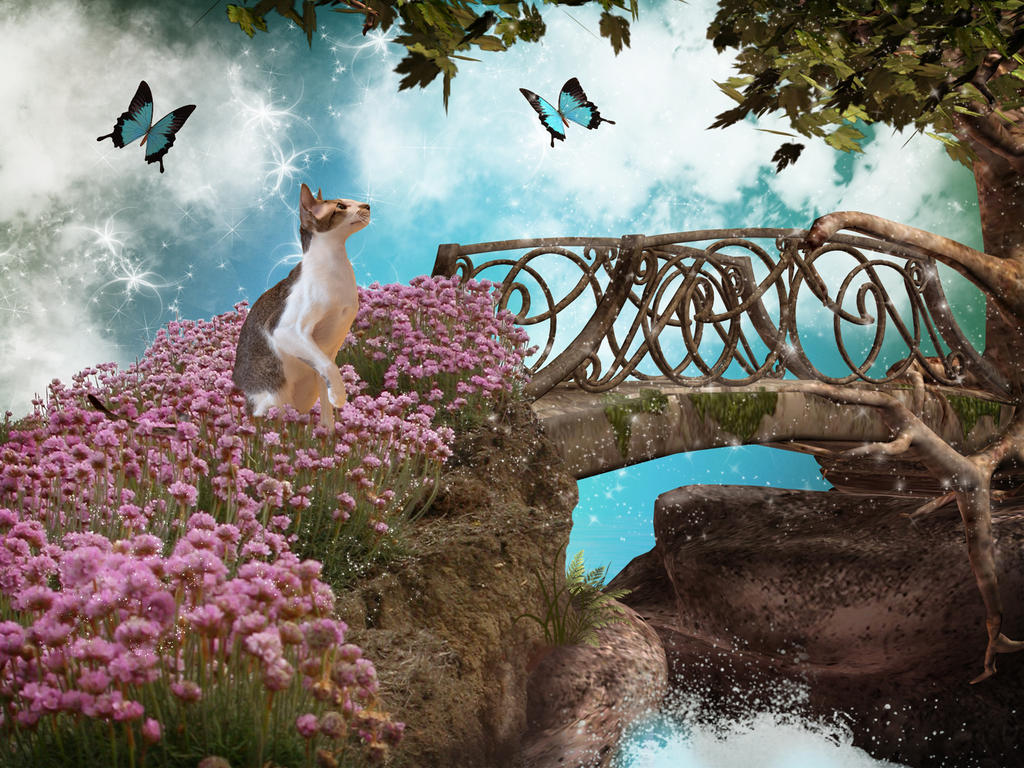 Apollo's Dream by charissa1066