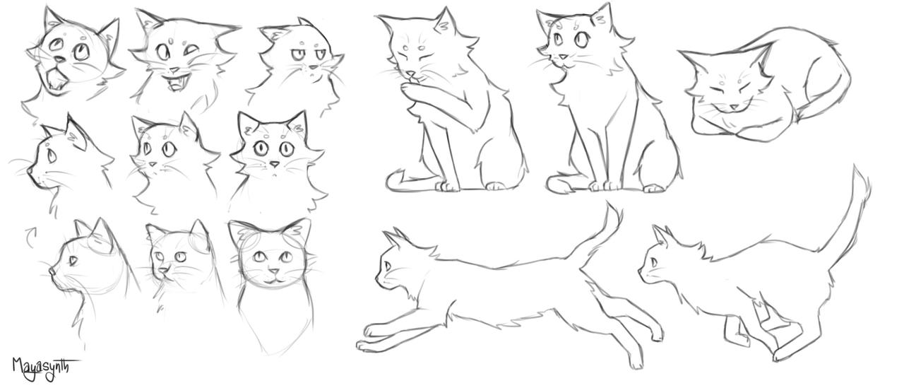 Cats Practice by OBatCatGirlO