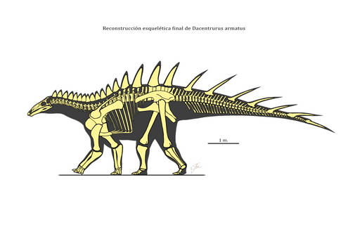 Skeletal reconstruction of Dacentrurus armatus
