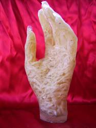 fish hand 1