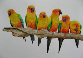 6 In A Row by GhyselenBert