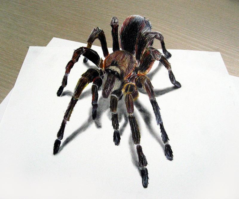 3D Tarantula by GhyselenBert
