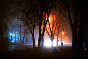 stranger in the night by mrakor