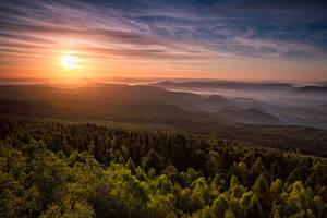 Morning Glory by jViks