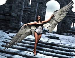 Wings by Sedorrr